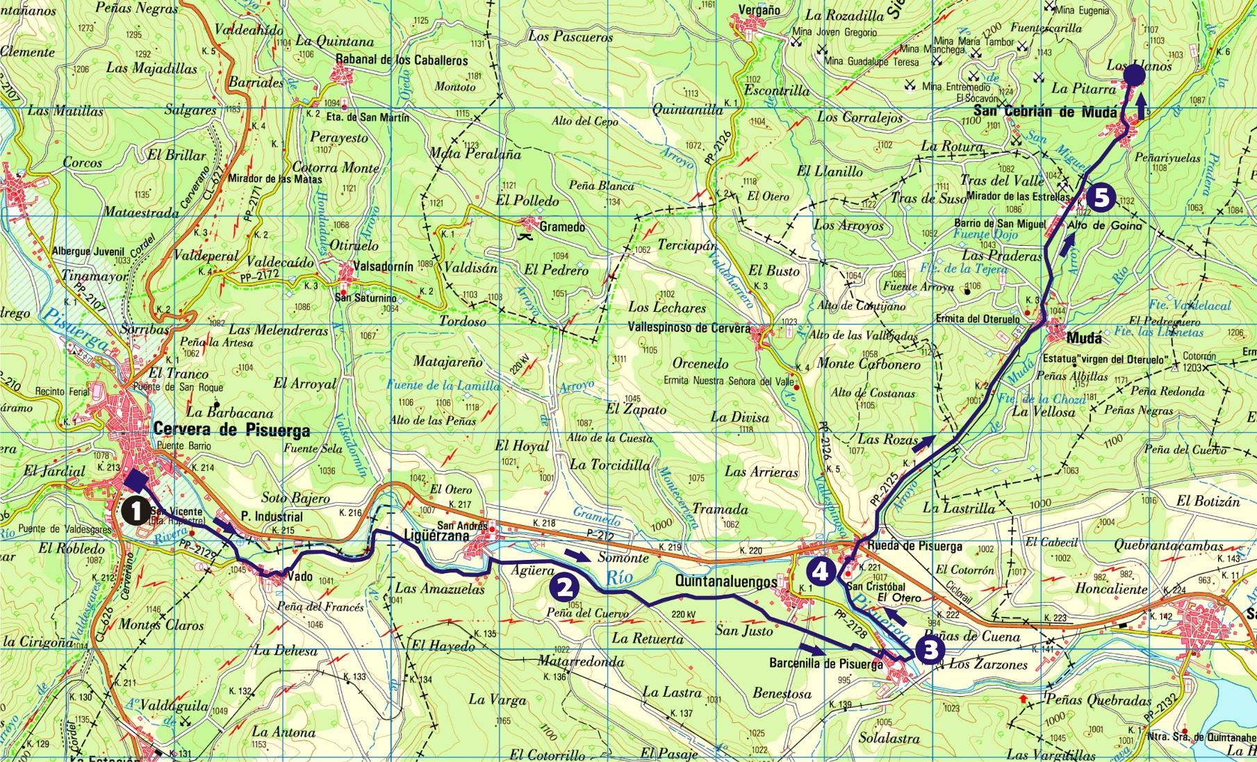 Ruta a la Reserva del Bisonte Europeo (33 kms.)